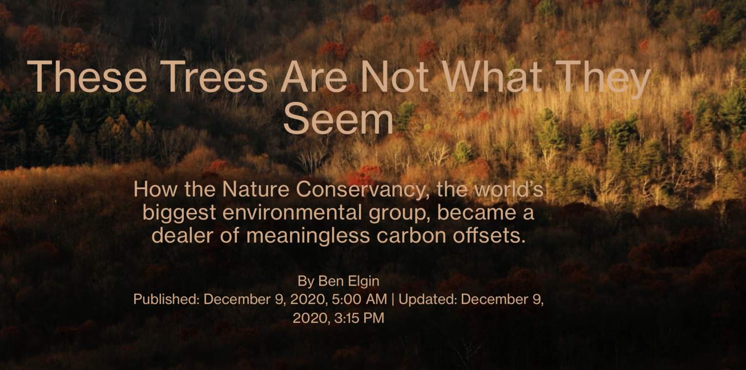 When Large Inexperienced Meets Large Cash: The Nature Conservancy Caught Greenwashing Company Air pollution
