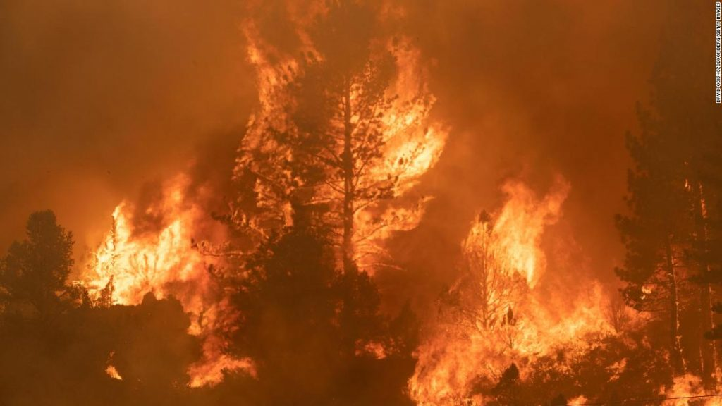 Wildfires are raging all around the world, burning locations which have by no means been burned earlier than